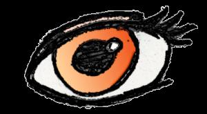 Edit, Kantenerkennung, Cartoon-Filter und Weichzeichner